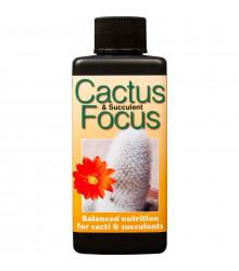 Hnojivo Focus pro kaktusy a sukulenty - 100 ml