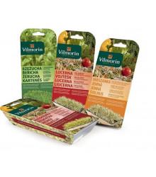 Sada na klíčky včetně misky - Vojtěška - Vilmorin - semena - 10 g