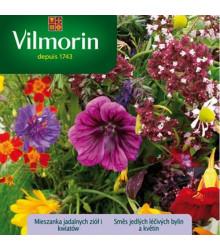 Vilmorin - Směs jedlých léčivých bylin a květin - semena - 3 g