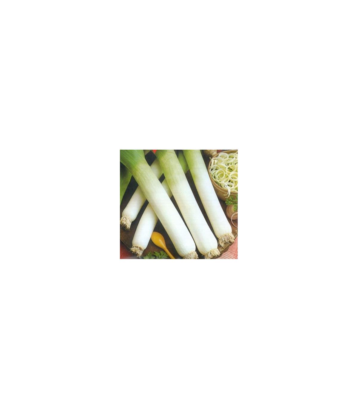 Pór zimní Genita - Allium porrum - semena - 1,5 g