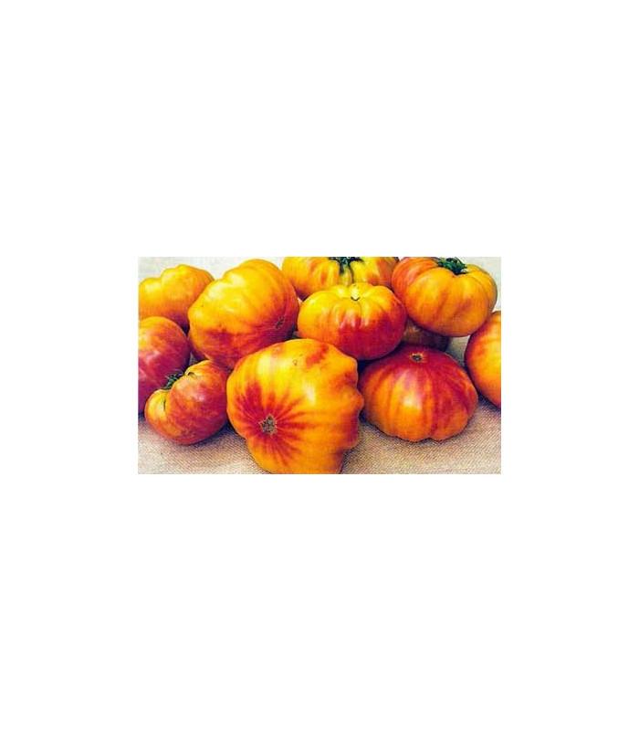 Rajče dvoubarevné- semena rajčete- 6 ks