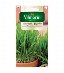Zelený ječmen - semena na klíčky - 20 g