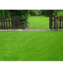 Travní směs Berliner Tiergarten - semena trávníku - 10 kg