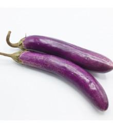 More about Lilek - Baklažán Fengyan - Solanum melongena - semena - 7 ks