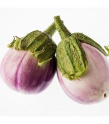 Lilek - Baklažán Rosa Bianca - Solanum melongena - semena - 6 ks