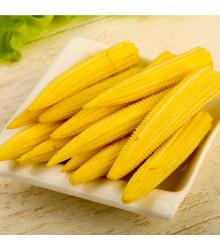 Kukuřice Minipop F1 - Zea mays - semena - 15 ks