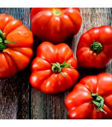 Rajče Marmande - Lycopersicon esculentum - semena rajčat - 20 ks