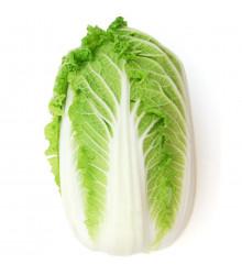 Zelí pekingské Michihili - Brassica rapa ssp. pekinensis - semena - 0,8 g