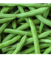 Fazol keříčkový Odeon - Phaseolus vulgaris - semena - 8 ks