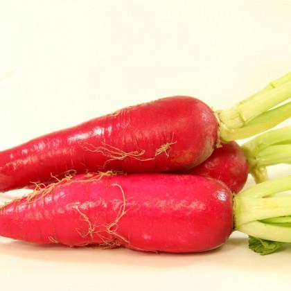 Ředkev Rosa - Raphanus sativus - osivo ředkve - 1,5 g