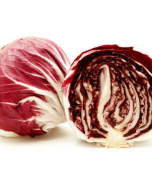Čekanka salátová Palla rosa - Cichorium intybus - semena - 200 ks