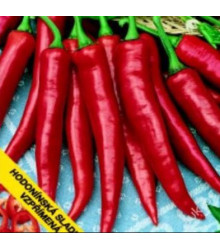 Paprika Hodonínská sladká - Capsicum annuum - semena - 0,6 g
