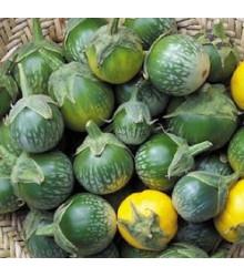 Lilek - Baklažán Zelený tygr - Solanum melongena - semínka zeleniny - 6 ks