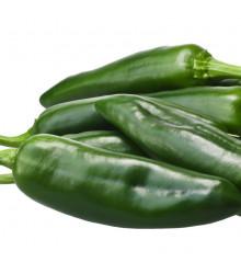 Chilli papričky Ancho - Capsicum annuum - semena - 6 ks