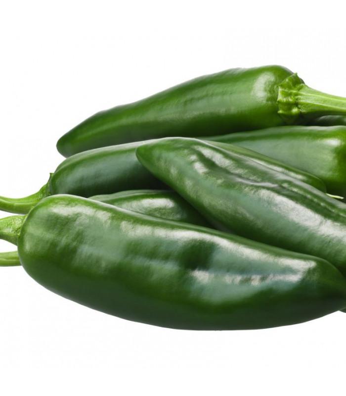 Chilli papričky - Ancho - Capsicum annuum - semena - 6 ks