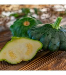Patizon Green Saucer F1 - Cucurbita pepo - semena - 5 ks
