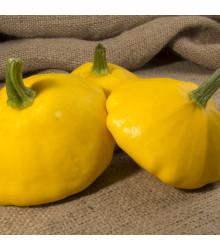 Patizon Golden Marbre - Cucurbita pepo - semena - 5 ks