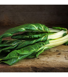 BIO Mangold Lucullus - Beta vulgaris - bio semena semena - 45 ks