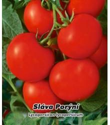 Rajče Sláva Porýní - Lycopersicon lycopersicum - semena - 50 ks