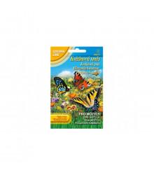 Květinová směs pro motýly - semena - 3,75 g