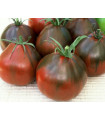 Rajče- Černá hruška- semena