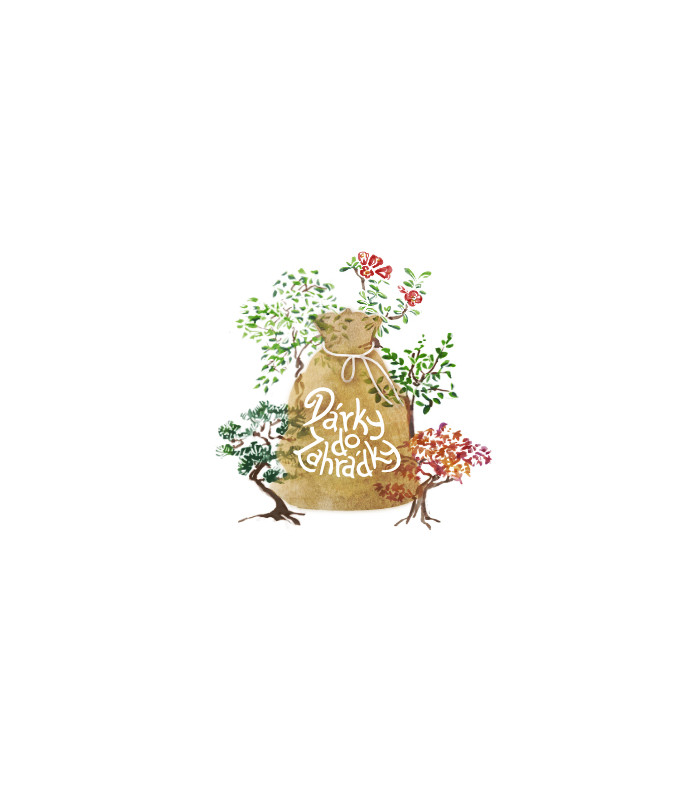 Dárkový balíček semen bonsají - zdarma dárkové balení