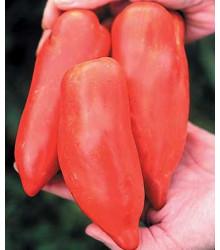 Rajče Howard - Lycopersicon esculentum - semena - 7 ks