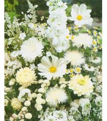 Letničky směs - Zahradní sen v bílém - semena - 0,9 g