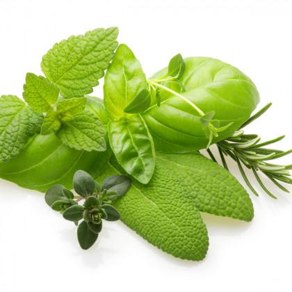 Aromatické byliny - směs