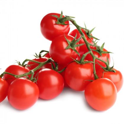 Koktejlová rajčata