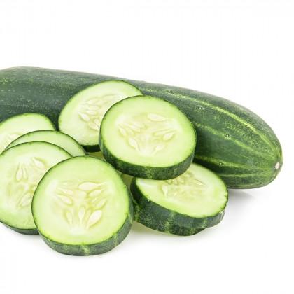 Okurky salátové