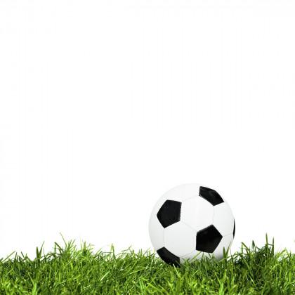 Zátěžový/sportovní trávník