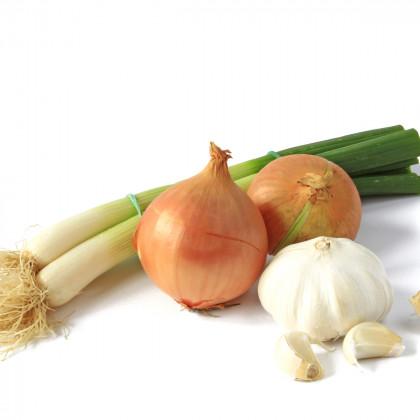 BIO cibulová zelenina